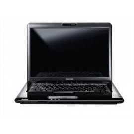 Datasheet Notebook TOSHIBA Satellite A300-1TM