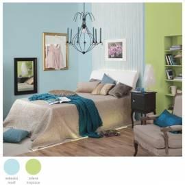 Benutzerhandbuch für Die Farbe der inneren DULUX Griffangel hellgrün/Inspiration