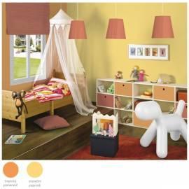 Benutzerhandbuch für Die Farbe der inneren DULUX Sunkissed gelb/a Sonnenstrahl