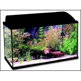Aquarium ANTE Set BALI 60 X 30 X 35 cm 1pc (C1-501) Bedienungsanleitung